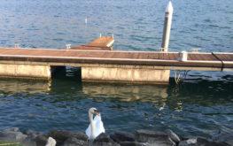 Lovere - Lungolago #3 - Lago Iseo